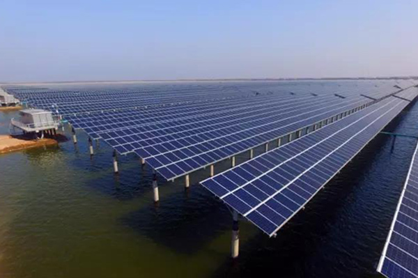 """Double-Glazed Modules, Reliable for """"Complementation between Fishery and PV"""""""